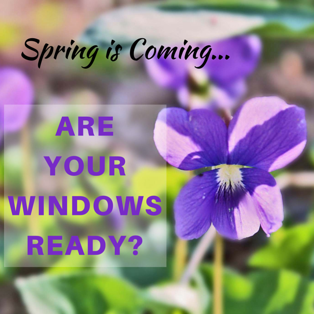 Get your windows ready for spring!