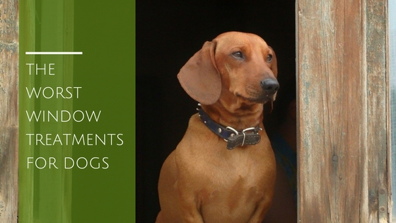worst window treatments for dogs