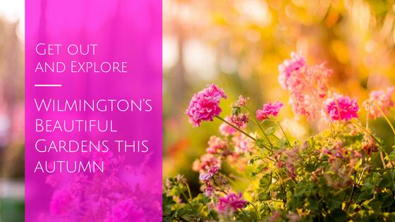 wilmington gardens